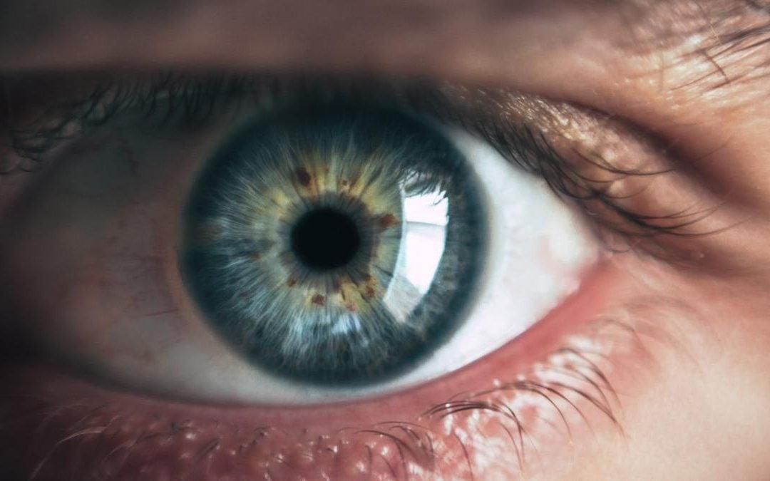 Hamish Brown M.B.E. – Stalking the Stalker